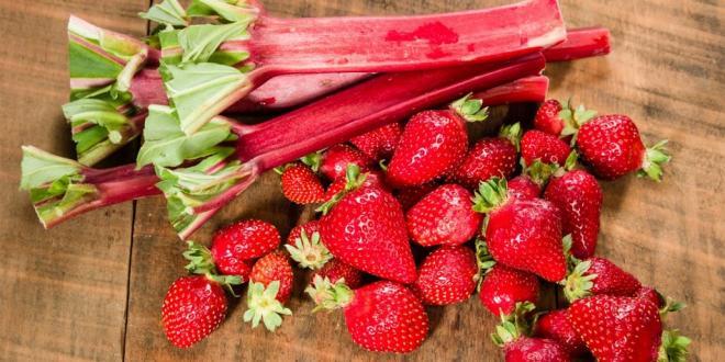 rhubarbs and strawberry